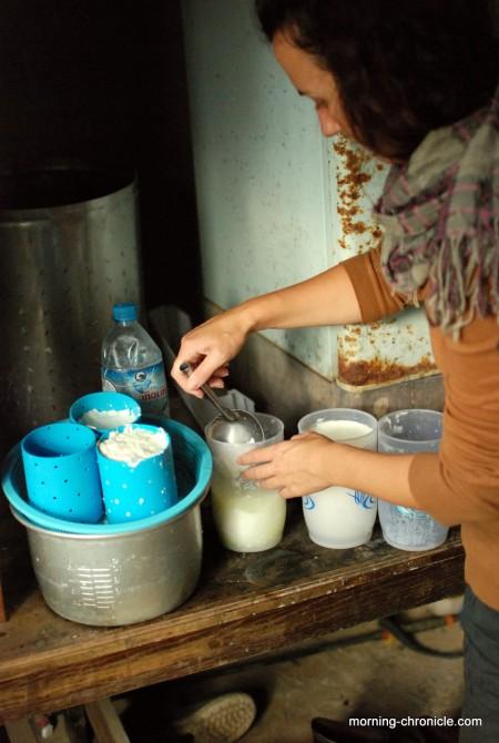 Juliette fabrique le fromage