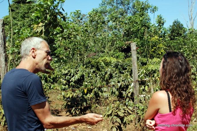 Explications sur la production de café au Laos