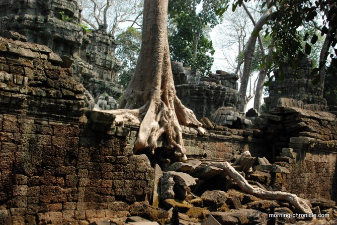 Ta Prohm envahit par la jungle