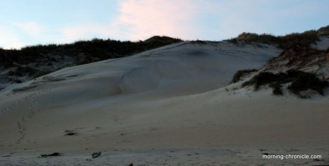 Dune Péninsule Otago
