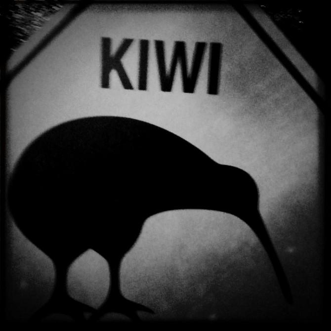 Attention Kiwi !