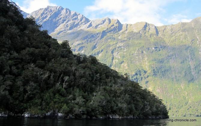 Milfjord sound croisière