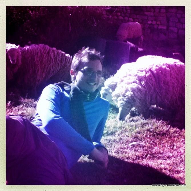 Alex et ses moutons