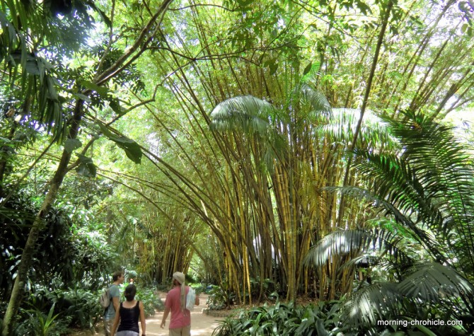 Jardin Zoo Botanique
