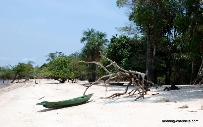 Plage au bord de l'Amazone
